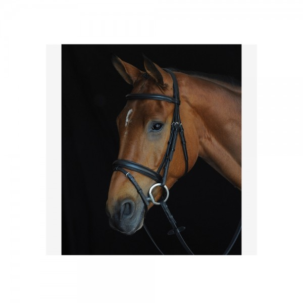 Collegiate Comfort Crown Padded Raised Flash Bridle