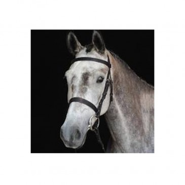 Collegiate Hunt Cavesson Bridle IV
