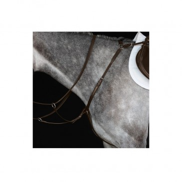 Collegiate IV Hunter Breastplate