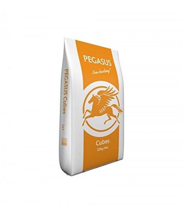 Pegasus Cubes 20 kg