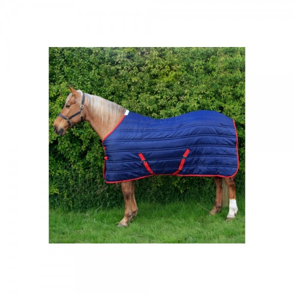 R136A Thomas 250g Rug Navy Red